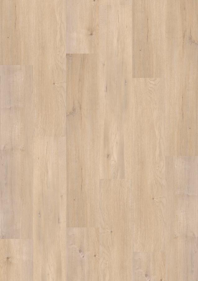 ziro vinyl basic kf birke ravenna klebe vinylboden ihr online shop f r. Black Bedroom Furniture Sets. Home Design Ideas